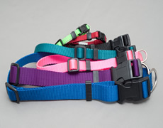 Dog Identification Collars