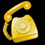 Phone Consultation w/ Karyn Garvin